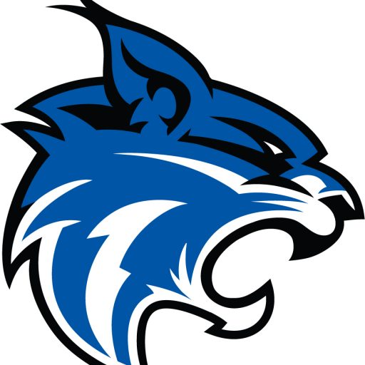 cropped-wildcat-logo.jpeg