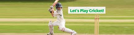 lets play cricket